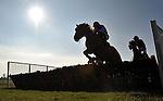 29/02/2012 - Kent National Day - Folkestone Racecourse - Kent