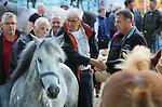 Foto: VidiPhoto<br /> <br /> BEMMEL - De grootste ponymarkt van Nederland in het Gelderse Bemmel kreeg maandag een forse teleurstelling te verwerken. Met een geschatte aanvoer van slechts 900 pony's en paarden, bleef het aantal dieren fors achter bij dat van andere jaren. Oorzaak is volgens handelaren de aangescherpte eisen voor transport, waardoor er per vrachtwagen minder pony's en paarden geladen mogen worden. De relatief dure vrachtkosten in combinatie met de lage prijzen voor de dieren, houden veel handelaren weg bij de traditionele markten. De ponymarkt van Bemmel is de grootste van ons land. Wel is er een trend dat er steeds meer paarden worden aangevoerd en de markt een geduchte concurrent dreigt te worden voor de drie grote paardenmarkten van Elst, Hedel en Zuid-Laren.