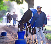 Rachel Alexandra gate schools at the Oklahoma Training Track in Saratoga on Aug. 27, 2009.