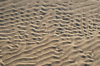 Detail of sand on the beach after a windstorm