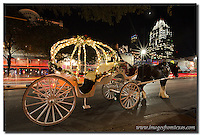 Sixth Street in Austin, Texas, is seemingly always active. This horse and buggy can take you anywhere along this Austin icon. Behind the street you can see buildings that make up the Austin skyline - the Frost Bank Tower and the Austonian, rising into the night sky.