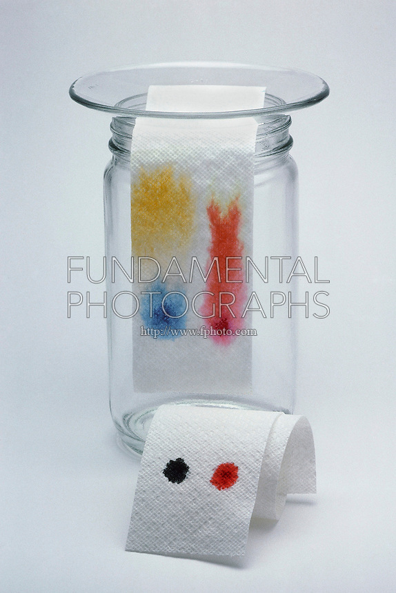 chromatography paper separation