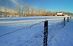 Idaho, North, Idaho Panhandle, Kootenai County, Blanchard. A farm and fence in a snowy landscape.