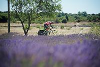 Edvald Boasson Hagen (Nor/DimensionData) racing next to the lavender fields<br /> <br /> stage 13 (ITT): Bourg-Saint-Andeol - Le Caverne de Pont (37.5km)<br /> 103rd Tour de France 2016
