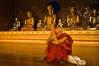 Buddhist monk at the Shwedagon Pagoda, Yangon (Rangoon), Myanmar (Burma)