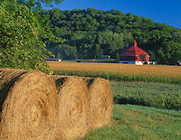 Pepin County, WI<br /> Morning sun on hay bales and corn field with octagonal red and white barn nestled in a forested valley