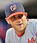 24 July 2012: Washington Nationals rookie outfielder Bryce Harper in the dugout during a game against the New York Mets at Citi Field in Flushing, NY. The Nationals defeated the Mets 5-2 to take the second game of their 3-game series. Mandatory Credit: Ed Wolfstein Photo