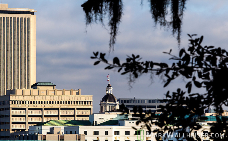 The dome of the Florida Capitol in downtown Tallahassee, Florida.