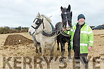 At the Causeway Ploughing Match at O'Connor farm, Sally Road, Ballyduff on Sunday were  Jerry Dennehy