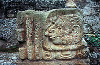 Stone bearing a Maya glyph at the Mayan ruins of Copan, Honduras