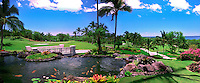 Hawaii, Wailea Gold Course Golf Course, panorama CGI Backgrounds, ,Beautiful Background