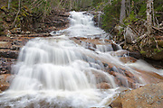 Sparkling Cascade in Harts Location, New Hampshire USA during the spring months. These cascades are located along a tributary of Avalanche Brook above Ripley Falls.