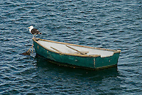 Rowboat, Massachusetts, Chatham, Chatham Harbor, Cape Cod