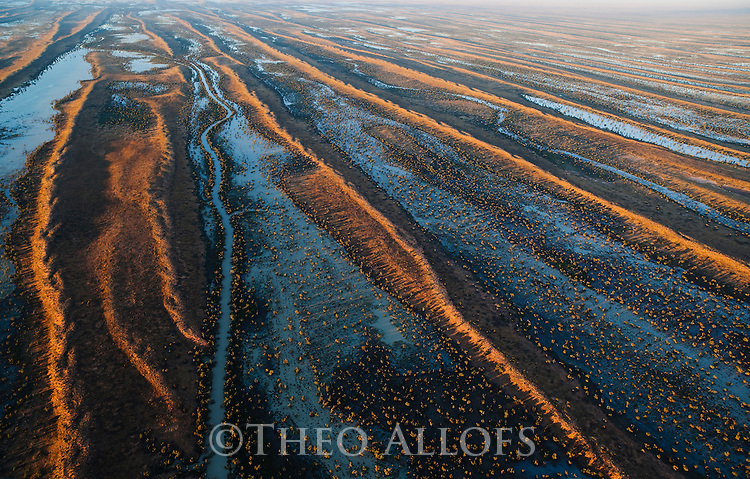 Australia, Queensland, Simpson Desert in flood in 2011
