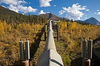 Trans Alaska Oil Pipeline and a close up view of fins that help keep permafrost ground frozen beneath the pipeline.