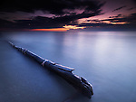 Driftwood in a dramatic dark sunset scenery at lake Huron, Pinery Provincial Park, Grand Bend, Ontario, Canada.