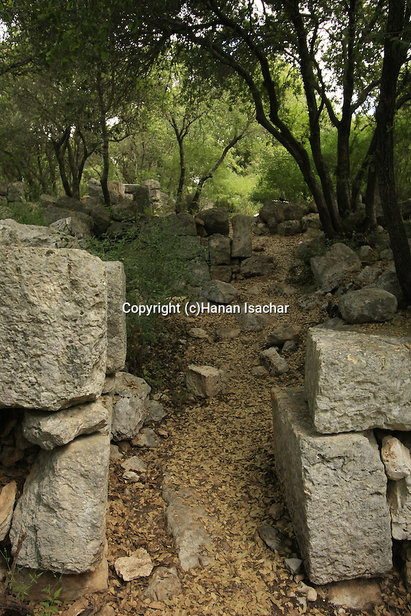 Israel, Upper Galilee, Hurvat Danaila was an agricultural farm in the Roman period