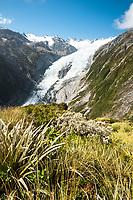 Franz Josef Glacier, Westland Tai Poutini National Park, West Coast, World Heritage Area, New Zealand