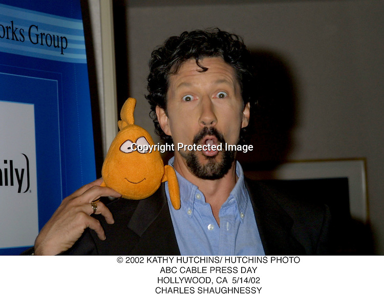 © 2002 KATHY HUTCHINS/ HUTCHINS PHOTO.ABC CABLE PRESS DAY.HOLLYWOOD, CA  5/14/02.CHARLES SHAUGHNESSY