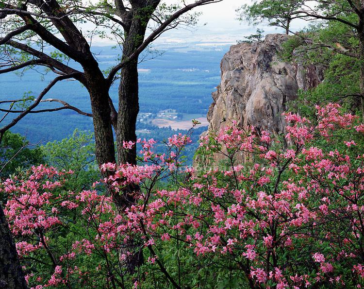 Appalachian Trail, Blue Ridge Parkway