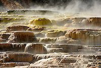 Mammoth Hot Springs is a large complex of hot springs on a hill of travertine in Yellowstone National Park adjacent to Fort Yellowstone and the Mammoth Hot Springs Historic District.