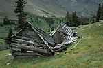 Old cabin, Sangre de Cristo Wilderness, San Isabel National Forest, Colorado