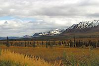 Alaska - Broad Pass