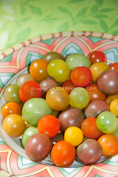 Heirloom cherry tomato variety in bowl showing mixture of colors from green, red, purple, brown, orange, yellow, gold