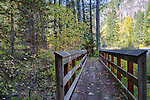 Idaho, North, Kootenai County, Coeur d'Alene. A bridge along trail 33 in the Coeur d'Alene District of the Idaho Panhandle National Forest in autumn.