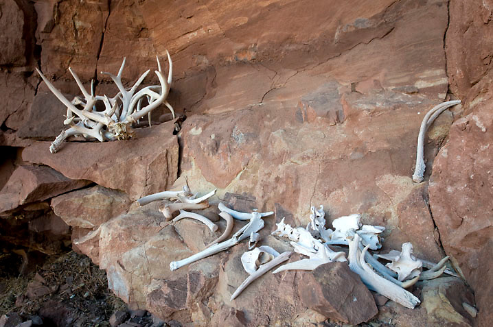 Antler Alcove on the Utah Flats route.