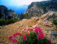 View of Calanque En Vau  Provence, France  Mediterranean Sea  Huge fiords on Provence seascoast  Near Marseille