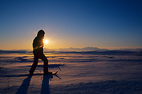 Snowshoeing across the snow covered tundra, Arctic coastal plains, Brooks Range, Arctic, Alaska