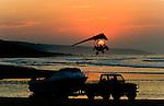 South Africa Sardine Run