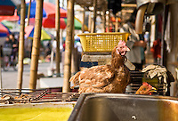 Chicken standing on top of cage in Chinese market place