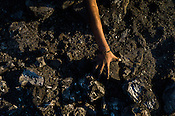 A child collects the coked coal in Bokapahari village in Jharia, outside of Dhanbad in Jharkhand, India.  Photo: Sanjit Das/Panos