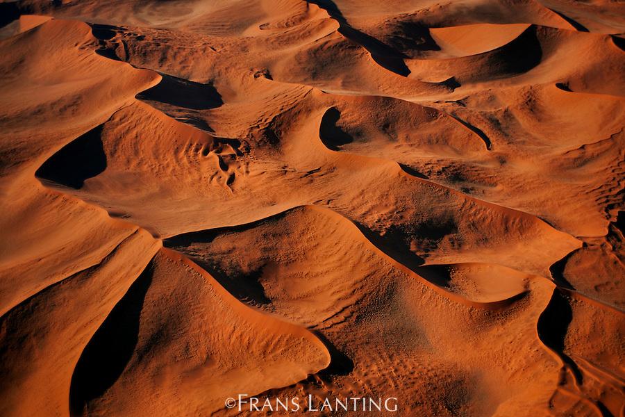 015993-01 | Frans Lanting / FransLanting.com