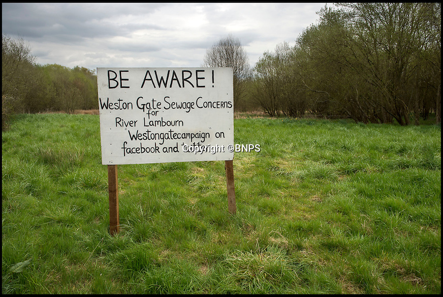 BNPS.co.uk (01202 558833)<br /> Pic: PhilYeomans/BNPS<br /> <br /> Protest - The new development is only yards from the River Lambourn.<br /> <br /> There was outrage today after environment bosses gave the green light for sewerage to be pumped into one of the most revered fly fishing rivers in Britain.<br /> <br /> The picturesque River Lambourn in Berkshire has long been a favourite among fishermen, treasured for its crystal clear waters that provide a home to large stocks of wild brown trout and the highly prized grayling.<br /> <br /> But campaigners say the 16-mile river and its inhabitants are now under threat after Environment Agency officials granted developers a permit to discharge effluence from a new luxury housing complex being built on its banks.<br /> <br /> It was thought that waste from the cluster of 10 plush homes at Weston, around seven miles north east of Newbury, would be routed into the main sewer network and stripped of any harmful phosphates.<br /> <br /> However developers Clean Slate said it would cost too much to do and instead proposed to discharge seven cubic metres of 'secondary treated sewage' - in which phosphates are still present - into the river each day.