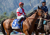 ARCADIA, CA APRIL 8: #3 Battle of Midway ridden by Corey Nakatani in the post parade before the Santa Anita Derby (Grade l) on April 8, 2017 at Santa Anita Park in Arcadia, CA. (Photo by Casey Phillips/Eclipse Sportswire/Getty Images)