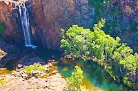 Waterfall     Nitmiluk National Park, Australia    Falls from Arhemland Escarpment       Northern Territory   Eucalyptus (gum) trees