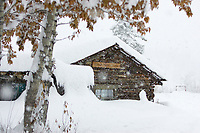 Historic log cabin in heavy falling snow, Wiseman, Alaska