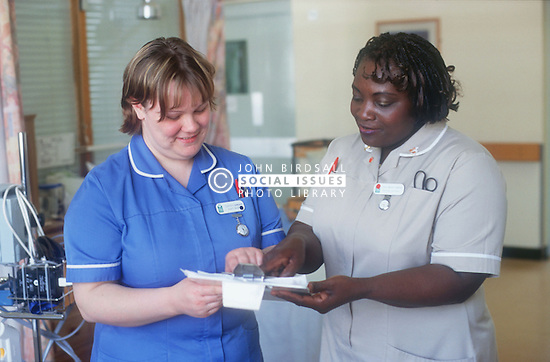 Female nurse and nursing auxiliary comparing patient's notes on hospital ward,