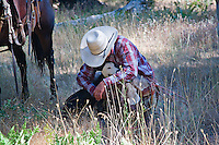 Western cowboy wearing red checked shirt and white cowboy hat, crouching with white cow dog in a moment of companioship, in a field of dry grass near a chestnut horse with western gear
