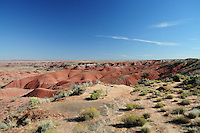 Navajo County, Arizona – The Painted Desert viewed from the Tiponi Point shows its mesas, buttes and badlands. The colors are due to ancient environmental conditions. This vast area is known as the Chinle Formation. The Painted Desert is a broad region of rocky badlands featuring unique rocks in a variety of hues - lavenders, grays, reds, oranges and pinks. Located in Northeastern Arizona, the Painted Desert attracts hundreds of thousands a visitors each year. Photo by Eduardo Barraza © 2014