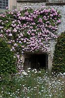 A rambling rose climbs over the facade of Haddon Hall