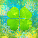 Four Leaf Clover or Shamrock illustrated with mandalas.