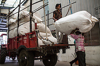 Workers unload a tractor of cotton at the Pratibha vertically integrated garment unit in Indore, Madhya Pradesh, India on 11 November 2014. Photo by Suzanne Lee for Fairtrade