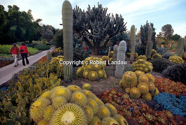 Cactus Garden at Huntington Gardens, Pasadena