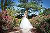 Bridal Session with the beautiful new bride Jennie at Chateau Morrisette Winery in the Blue Ridge Mountains of Virginia