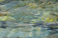 abstract impressionistic camera painting of water flowing down the tobacco river in montana