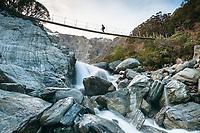 Hiker on swingbridge over Tekano Creek near Douglas Hut in Copland Valley, Westland Tai Poutini National Park, UNESCO World Heritage Area, West Coast, New Zealand, NZ